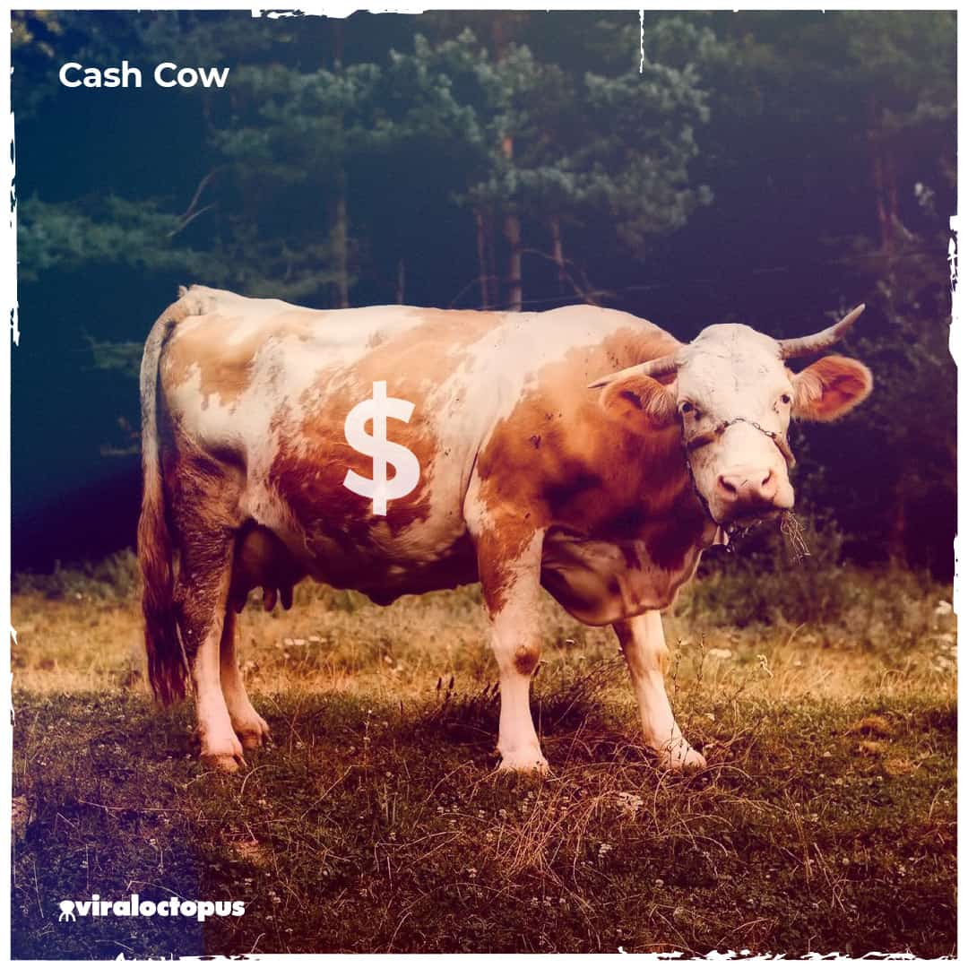 Cash Cow - High market share, Low market growth rate